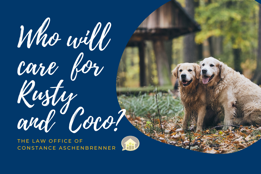 Who Will Care For Rusty & Coco?